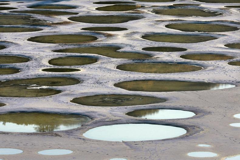 أغرب بحيرات العالم : البحيرة المرقطة فى كندا spotted-lake-8[2].jp